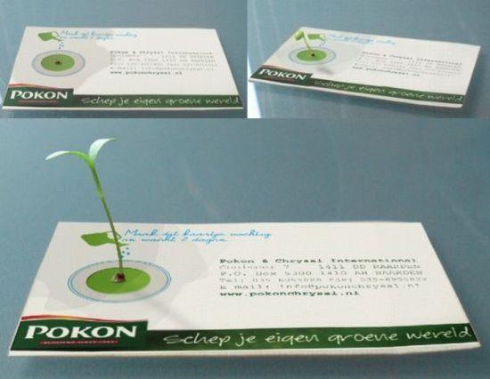 名刺から草が生えるアイデア - デザイナーが大切にしたいコンセプトメイク